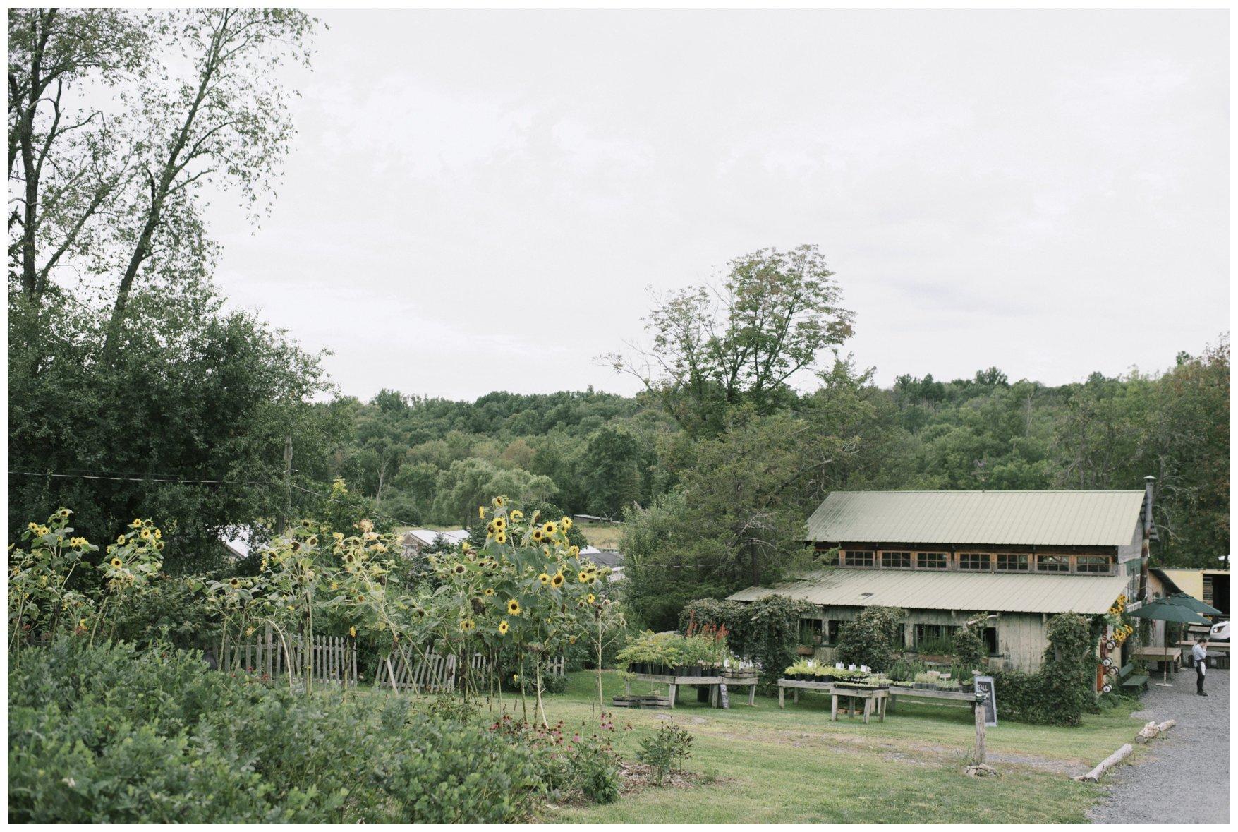Emmerich Tree Farm Wedding_0371.jpg