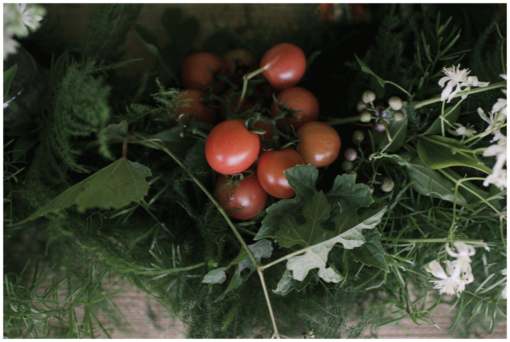 Emmerich Tree Farm Wedding_0376.jpg