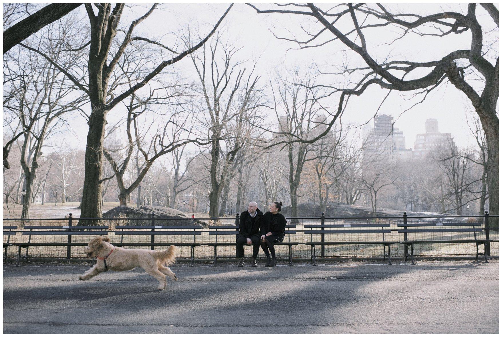 Central Park Wedding_0595.jpg